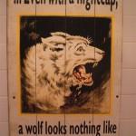 Wolf_in_Sheeps.JPG